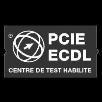 pcie-ecdl